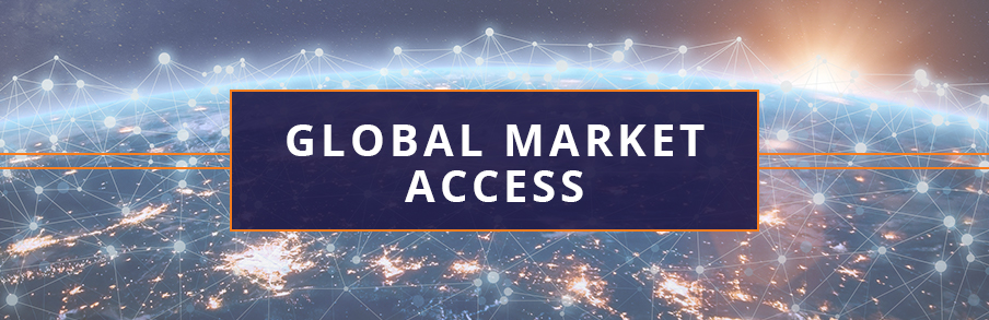 global-market-access