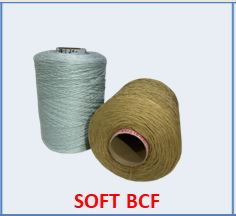 icon soft bcf